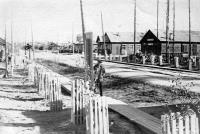 Поселок Двинской. 1970-е годы.
